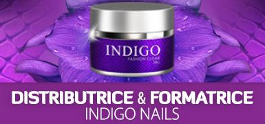 Kit Pro Pose ongle gel UV Distributeur Indigo Nails .